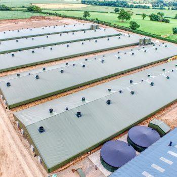 Vantage Farm Case Study Broiler