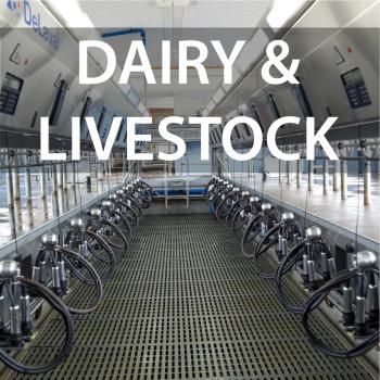 Dairy & livestock